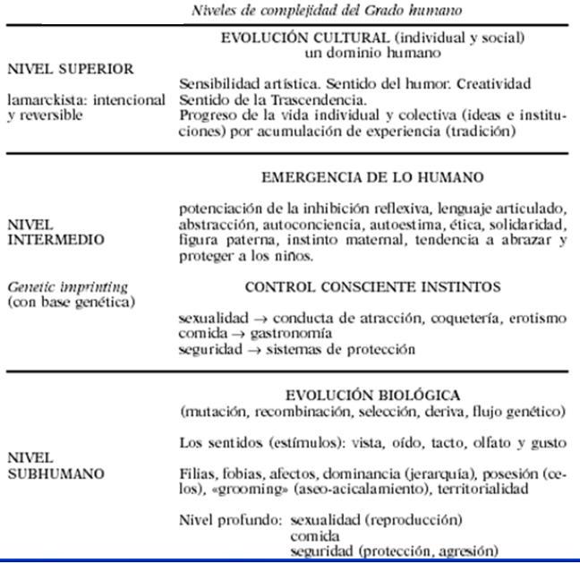 Evolución humana y sociedad: la multidimensionalidad de las necesidades humanas (1/2)