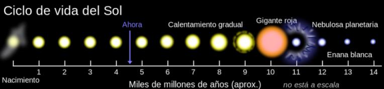 ciclo vital sol